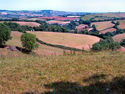 "Ancient Romano Settlement in Rocombe Valley"" hspace="
