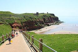 The delightful cliffs in Devon
