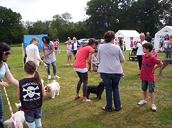 Dog Show at the Fete at Longparish
