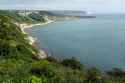 Durlston Bay