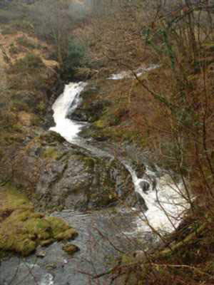 The East Okement River chuckling along the Tarka Trail