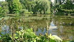 "Longstock Water Garden"" hspace="