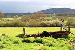 "Farmland Motcombe"" hspace="