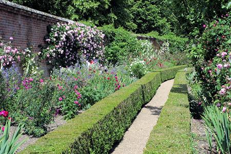 "MottisfontAbbey Rose Garden"" hspace="