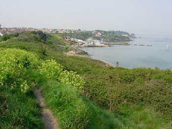 Portland Harbour from the South West Coast Path