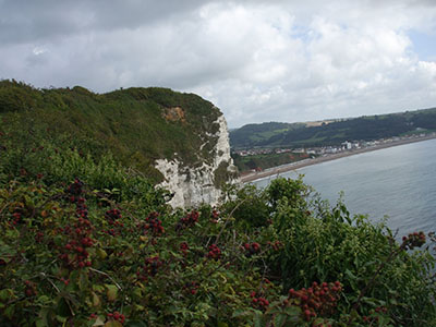 South West Coast Path above Beer