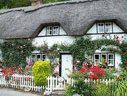 Thatched cottage in the Test Valley