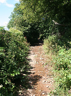 "The start of Two Moors Way, Ivybridge"" hspace="