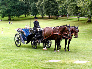 "Horse Drawn Carriage waiting for the Bride and Groom  "" hspace="