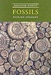 Discover Dorset Fossil