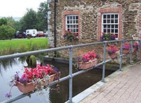 "Flowers by the river at Whitchurch"" hspace="