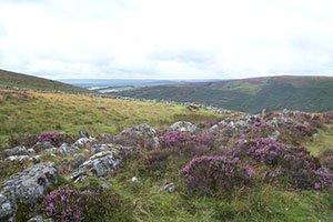 Grimspound, a Bronze Age village in  Dartmoor