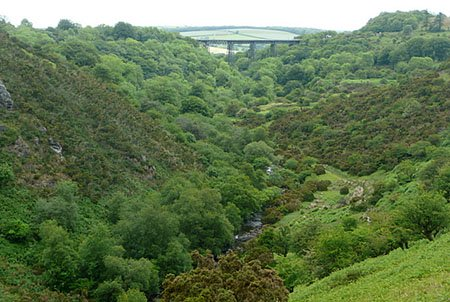 "Meldon Viaduct in the distance"" hspace="