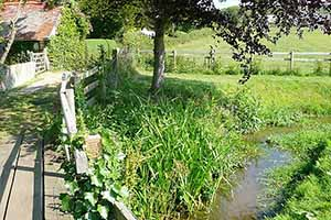 """Footpath on the way to Brighstone, Isle of Wight"""" hspace="""