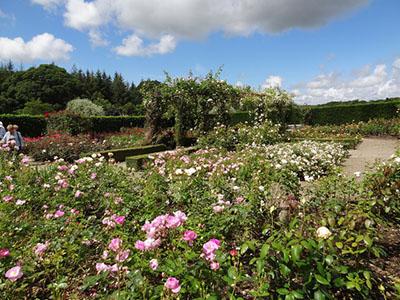 """Rosemoor Gardens"""" hspace="""