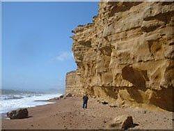 """Sandstone Cliffs, Burton Bradstock"""" hspace="""