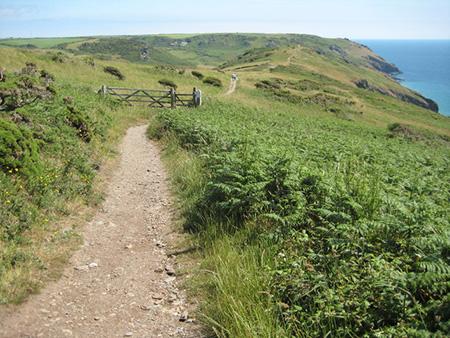 """South West Coast Path West Ciff"""" hspace="""
