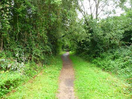 "Test Way footpath at Houghton, Hampshire"" hspace="