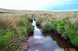 """Upper Tavy, Dartmoor"""" hspace="""